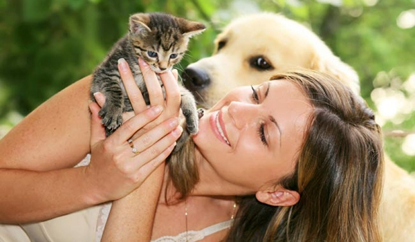 Pet Grooming Singapore